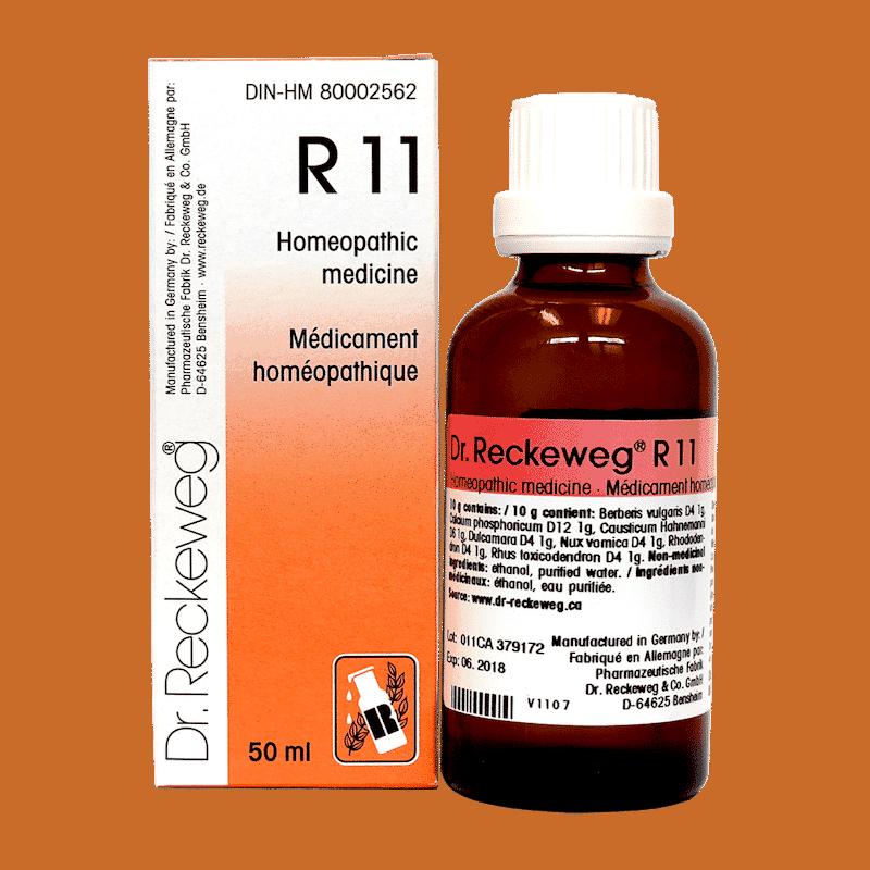 r11-dr-reckeweg