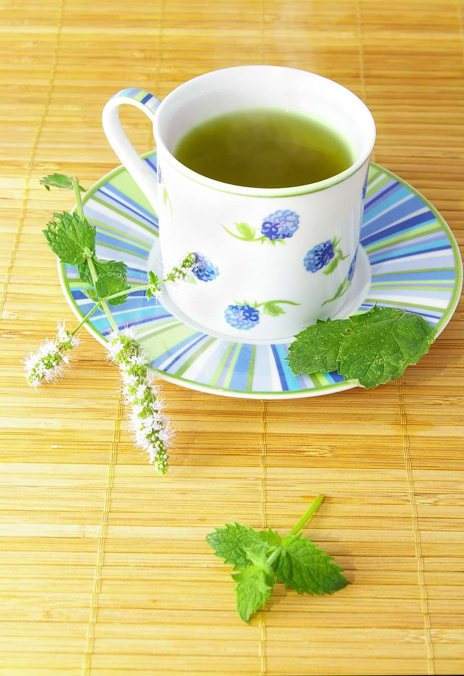 hot green tea with fresh mint leaves