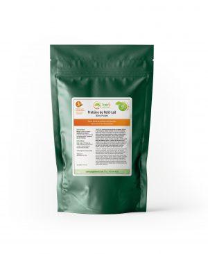 Protéine de Petit-Lait Syner G Suppléments 500 g
