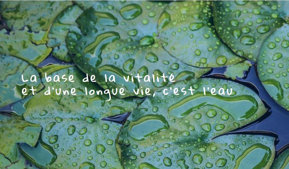 ArticleSurL'eau3